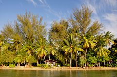 Raiatea, french polynesia royalty free stock image