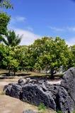 Raiatea, french polynesia Royalty Free Stock Image