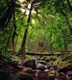 Raiatea, French Polynesia Stock Photography
