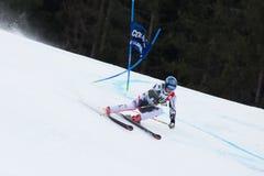 RAICH Benjamin (AUT). Alta Badia, ITALY 22 RAICH Benjamin (AUT) competing in the Audi FIS Alpine Skiing World Cup MEN'S GIANT SLALOM Stock Photography
