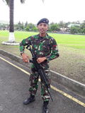 Raider Leger royalty-vrije stock foto