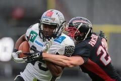 Raiders versus Vikingen panthers Stock Fotografie