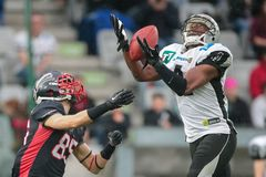 Raiders versus Vikingen panthers Royalty-vrije Stock Foto