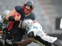 Raiders versus Vikingen panthers Stock Foto's