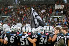 Raiders vs. Adler Royalty Free Stock Images