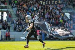Raiders vs. Dragons Royalty Free Stock Photos