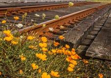 Rail abandonné image stock