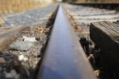 The Rail Royalty Free Stock Photo