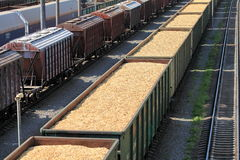 Rail cars loaded with wood chip Stock Images