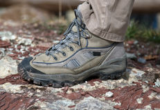 Rail de la chaussure Photographie stock