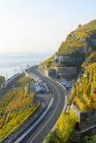 Rail et route par le paysage de carte postale Images stock