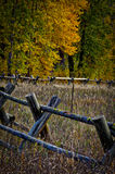 Rail Fence with Cottonwoods Royalty Free Stock Image