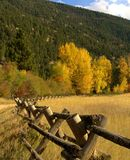 Rail Fence Mountain Meadow Stock Image