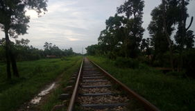 nature with railway Stock Photography