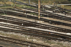 Rail lines Stock Images