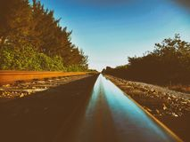 On the rail. Is a look at the south florida railways in the morning with a soft focus with the shadows royalty free stock photo