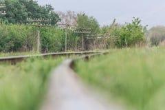 Rail. Nature in Tekeli. Spring. royalty free stock photos