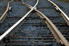Rail Road. Tracks crossing each other Royalty Free Stock Photo