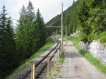 Rail road in the forest of Interlaken area Stock Photo