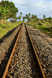 Rail road and palm tree. The rail road of Ambilo, Madagascar, just near the beach Stock Image