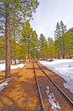 Rail Siding into the Snow and Trees Stock Photo
