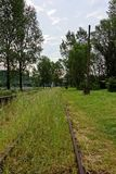 Rail tracks overgrown in the grass Royalty Free Stock Photos