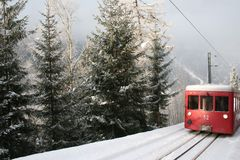 Rail Travel In Forest Royalty Free Stock Photo
