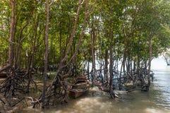 Railay beach in Krabi Thailand mangrove Stock Photo