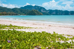 Railay beach in Krabi, Thailand Royalty Free Stock Image