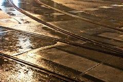 Railes mojados de la carretilla en la luz y las calles Foto de archivo libre de regalías
