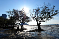 Railey, Krabi泰国海 免版税库存照片