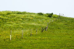 Railing on the prairie Royalty Free Stock Images