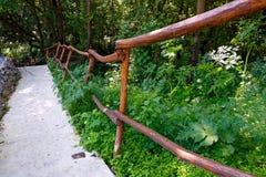 Railings terraces in  natural park. Royalty Free Stock Image