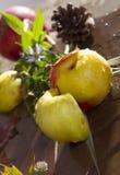 Raillez vers le haut de la pomme colorée de feuille d'automne humide et de la fleur Photographie stock libre de droits