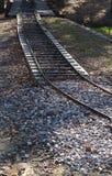 Railriad轨道在森林里 库存照片
