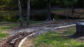 Railriad spår i skogen Arkivbild
