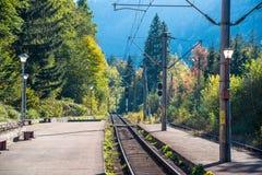 Railroad étroit un jour coloré lumineux d'automne photo libre de droits