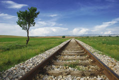 Railroad. On the field of Macedonia Stock Photo