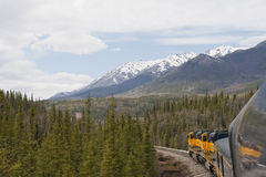 Railroad in Alaskan wilderness. A train passing through scenic Alaskan wilderness between Talkeetna and Denali Royalty Free Stock Photos