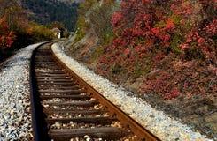 Railroad and autumn leaves Stock Photo