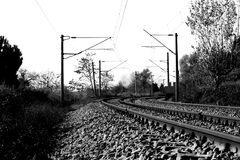 Railroad. Black and white railroad between trees Royalty Free Stock Photos