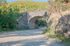 Railroad bridge in the Montagu Pass Royalty Free Stock Images