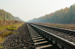 Railroad close up in autumn Stock Image