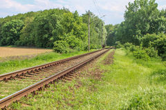 Railroad in country Royalty Free Stock Photography