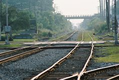 Railroad Crossing. In rural area shot with depth of field stock image