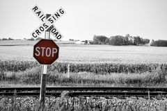 Railroad Crossing. With stop warning sign Royalty Free Stock Photography