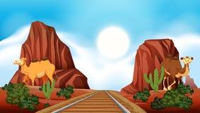 Railroad through the desert. Illustration Stock Photos