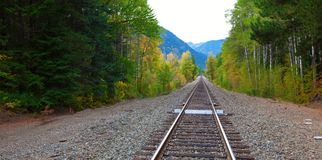 Railroad in the fall forest with mountains. Stock Images