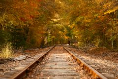 Railroad. Fall trees and leaves on railroad tracks Royalty Free Stock Image