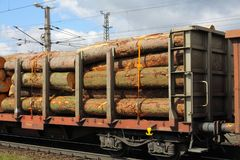 Railroad with firewood royalty free stock photo